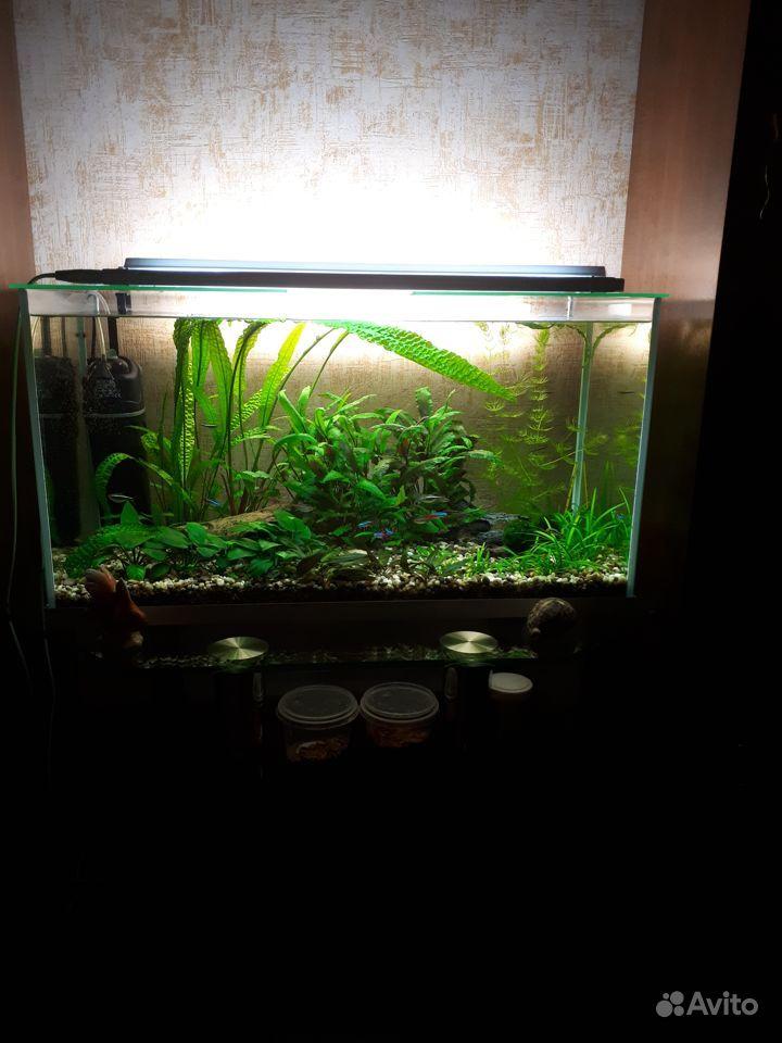 Продам аквариум 105 л Акваэль