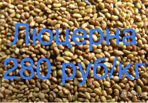 Семена трав купить на Зозу.ру - фотография № 2
