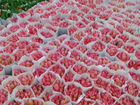 Тюльпаны, розы оптом