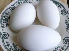 Гусиные яйца,инкубационные